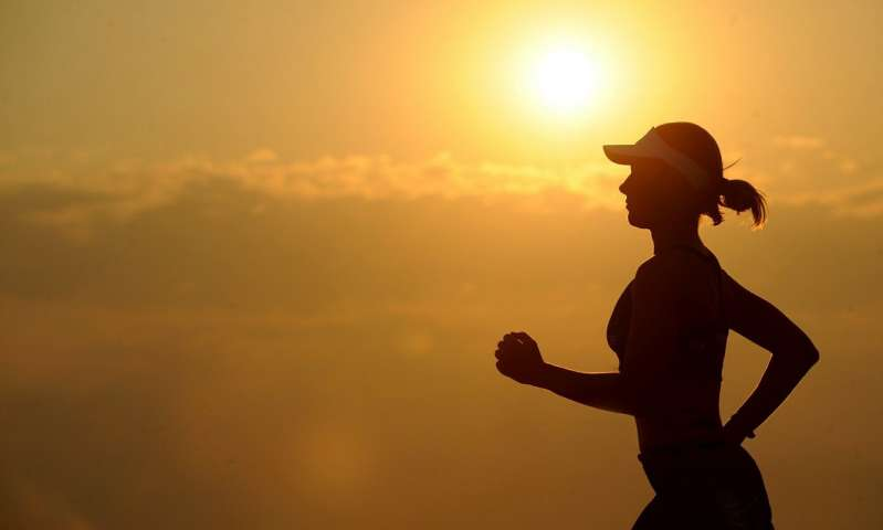 Exercise and nutrition regimen benefits physical, cognitive health
