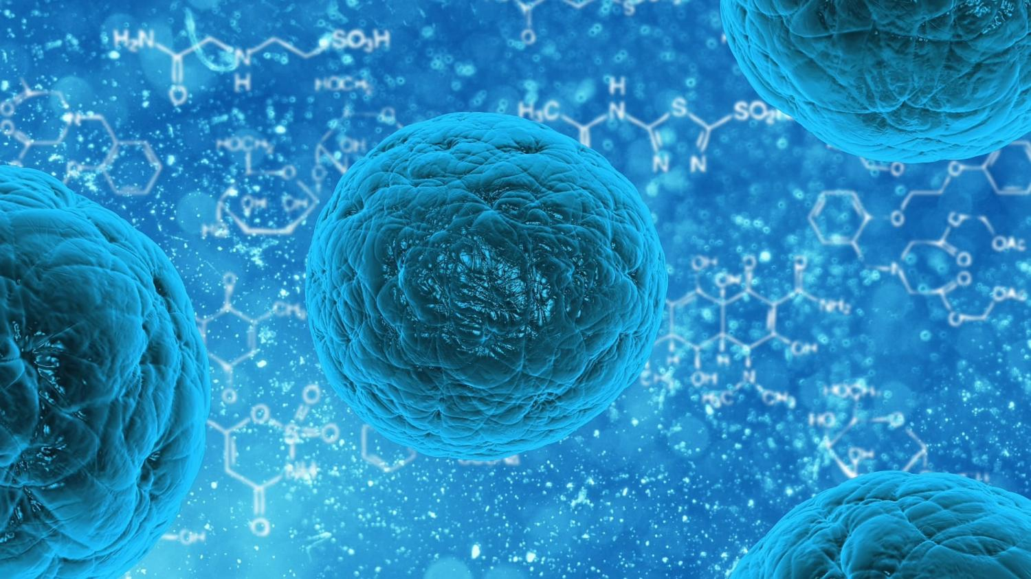 Researchers create human airway stem cells from patients' cells