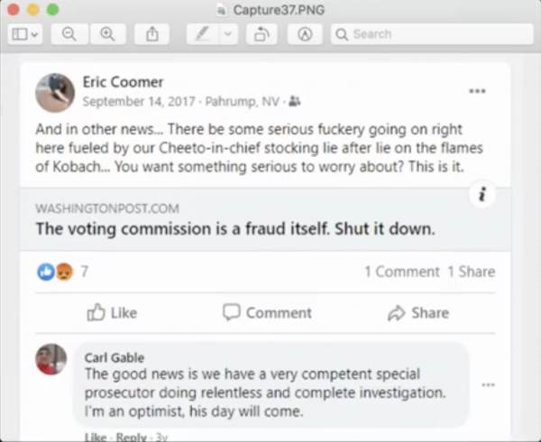 cheaters, conspiracy, dominion, Donald Trump, election fraud, election