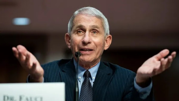 Fauci Admits He Lied About Covid-19 Herd Immunity Threshold