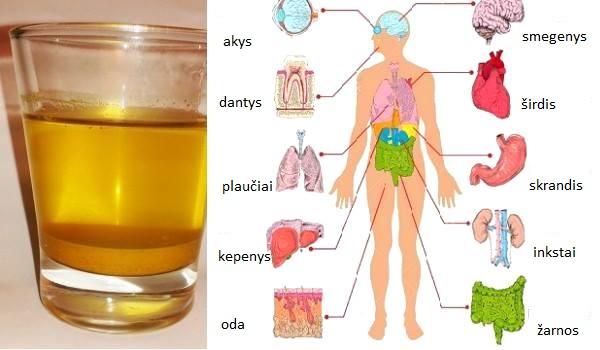 Išgerkite ryte vandens su ciberžole, neįtikėtina nauda kūnui