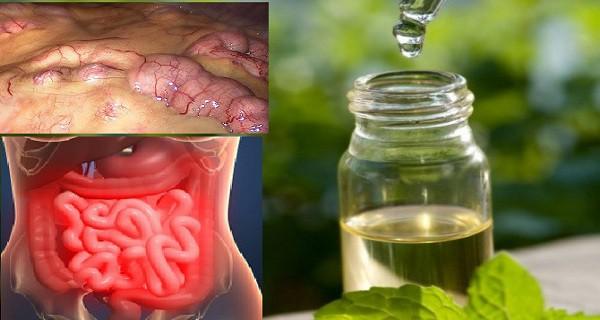 Pašalinkite visus toksinus iš organizmo per 3 dienas