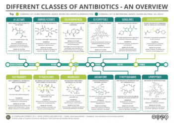 A-Guide-to-Different-Classes-of-Antibiotics