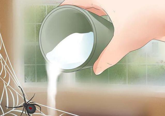 Kaip atsikratyti vorų namuose