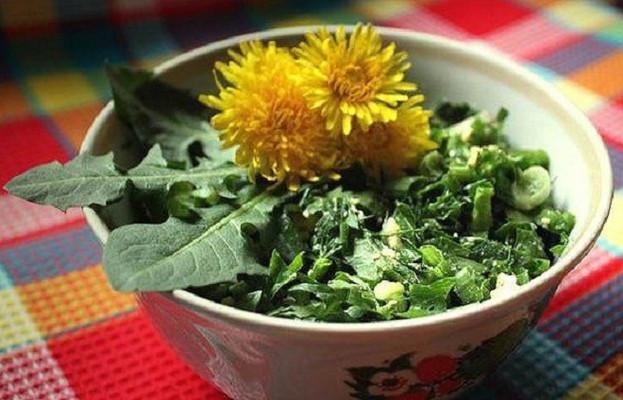 Valgomos piktžolės - geriausi vaistai nuo pavasario avitaminozės