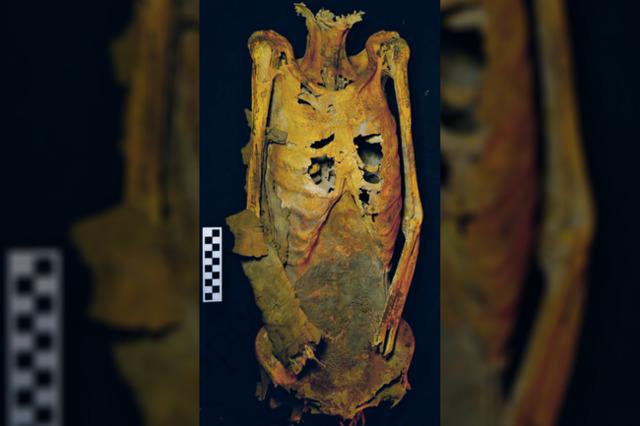 archeologija, istorija, Egiptas, tatuiruotės, mumijos