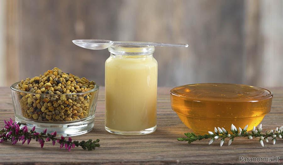 Bičių duonelė – šaukštelis natūralių vaistų » SAVAITĖ – viskas, kas svarbu, įdomu ir naudinga.