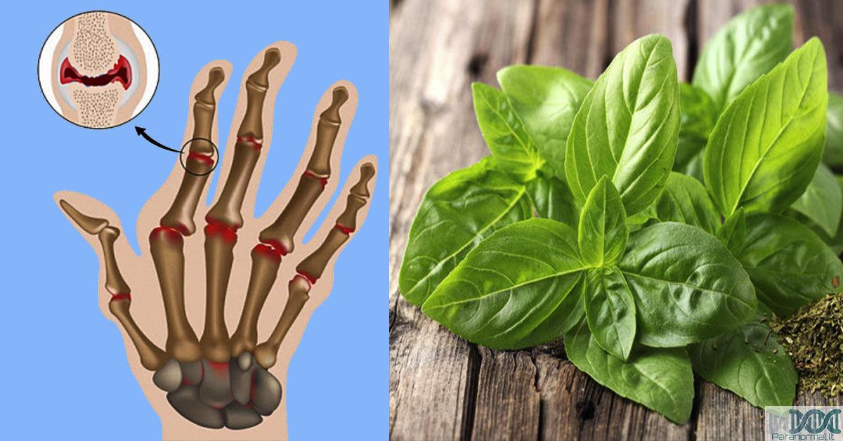 Mityba – vienintelė viltis sergantiems artritu – Ann Wigmore Fondas