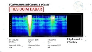 Schumann Resonance Today 24/7 Live Graph